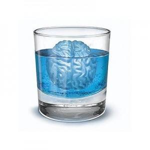 Brain Shaped Ice Cube Tray