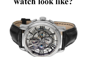 Most Expensive Watch on Amazon