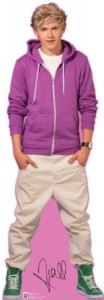 One Direction Niall Cutout