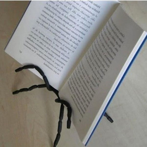 Spider Mount Book
