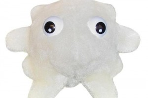 White Blood Cell Plushie