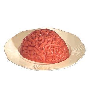 Human Brain Gelatine Mold