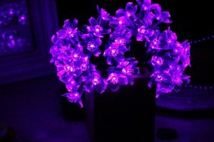 Purple Solar Flower Lights