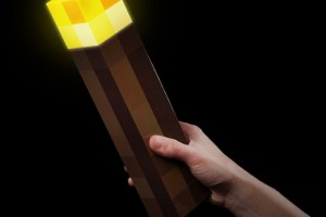 Real Minecraft Torch